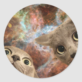 Two Gray Cats in Space Before a Nebula Round Sticker