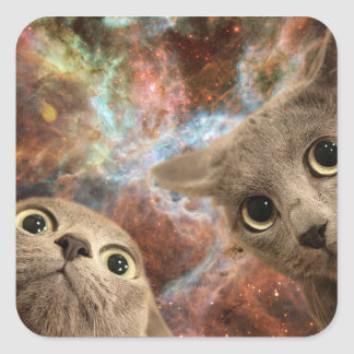 Two Gray Cats in Space Before a Nebula Square Sticker