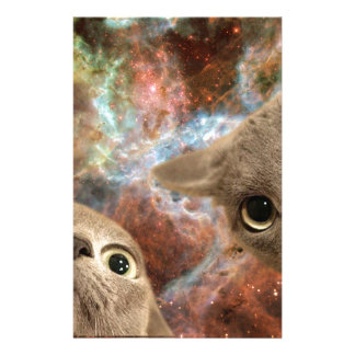 Two Gray Cats in Space Before a Nebula Stationery