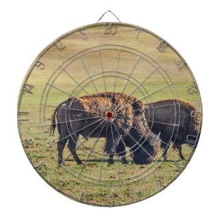 Two Grazing Buffaloes on The Range Dartboards