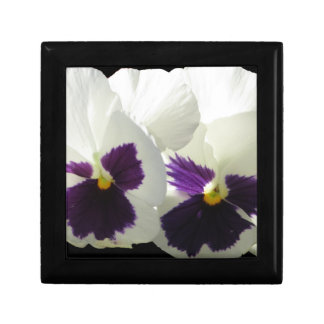 TWO HAPPY PANSIES GIFT BOX