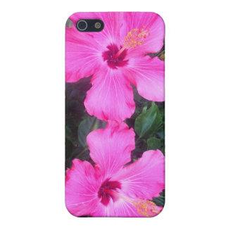 Two Hibiscus Flowers Case For The iPhone 5