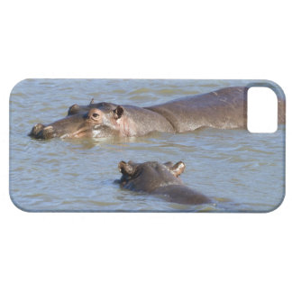 Two hippos in a river, Kruger National Park, Case For The iPhone 5