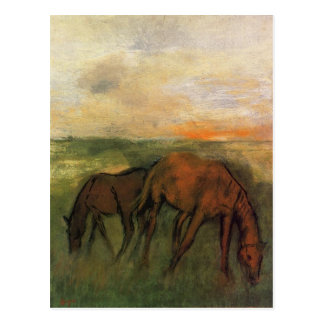 Two Horses in a Pasture by Edgar Degas Postcard