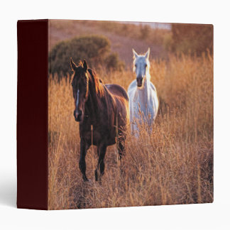 Two Horses Running Binder