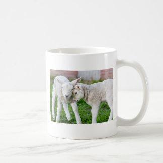 Two hugging and loving white lambs coffee mug