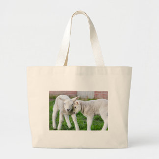 Two hugging and loving white lambs large tote bag