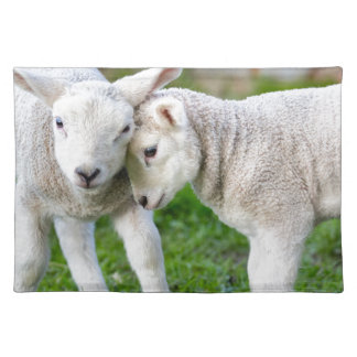 Two hugging and loving white lambs place mat