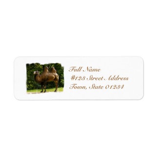 Two Humped Camel Mailing Labels