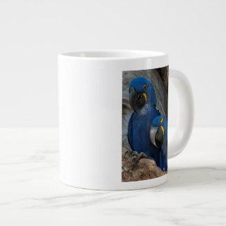 Two Hyacinth Macaws, Brazil Large Coffee Mug