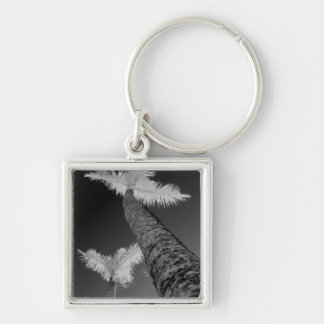 Two infrared palm trees. Silver-Colored square keychain
