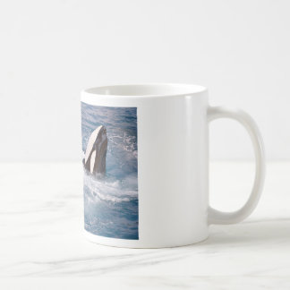 Two killer whales coffee mug