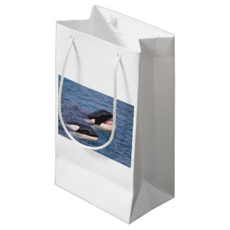 Two killer whales small gift bag