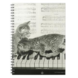 Two kitten playing on piano keyboard, (B&W) Notebook