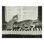 Two kitten playing on piano keyboard print