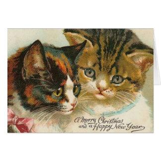 Two Kitties Christmas Card