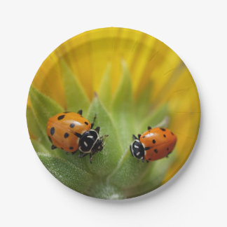 Two Lady Bugs on a Sunflower 7 Inch Paper Plate