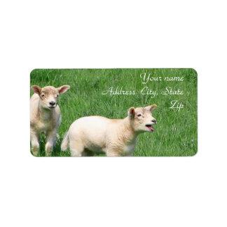 Two Lambs Custom Address Labels