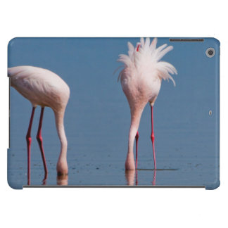 Two Lesser Flamingos (Phoenicopterus Minor) Feed Case For iPad Air