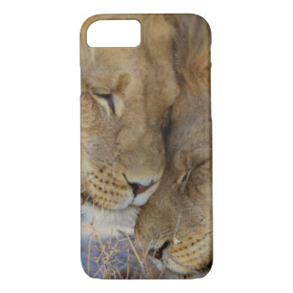 Two Lions rubbing each other iPhone 7 Case