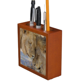 Two Lions rubbing each other Pencil Holder