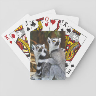 Two Little Lemurs Poker Deck