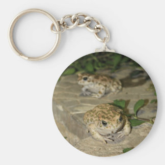 Two little toads - green frog print basic round button keychain