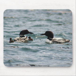 Two loons with two babies mouse pad