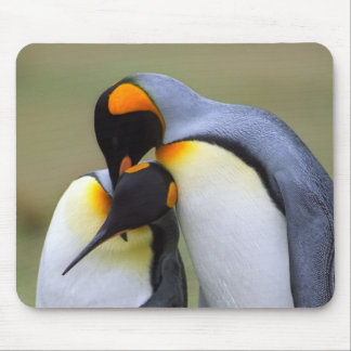 Two love penguins mouse pad