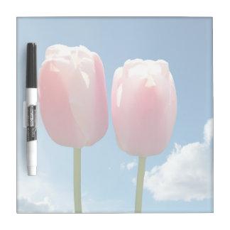two lovely tulip flowers in blue sky. flower photo Dry-Erase whiteboard