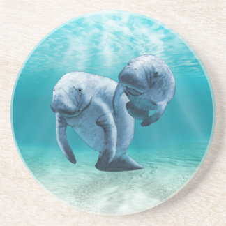 Two Manatees Swimming Coaster