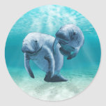 Two Manatees Swimming Round Sticker