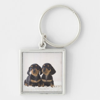 Two Mini Dachshund Sitting Silver-Colored Square Keychain