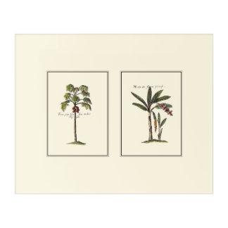 Two Miniature Framed Palm Trees Acrylic Wall Art