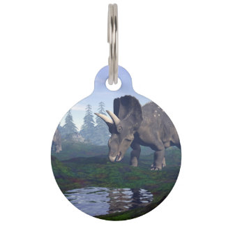 Two nedoceratops/diceratops dinosaurs walking pet nametag