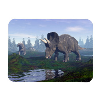 Two nedoceratops/diceratops dinosaurs walking rectangular photo magnet