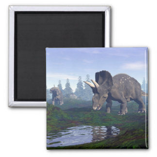 Two nedoceratops/diceratops dinosaurs walking square magnet