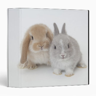 Two Netherland Dwarf and Holland Lop bunnies Vinyl Binder