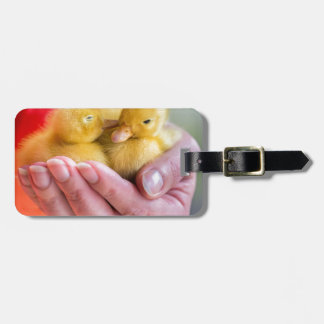 Two newborn yellow ducklings sitting on hand bag tag
