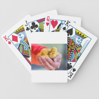 Two newborn yellow ducklings sitting on hand bicycle playing cards