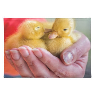 Two newborn yellow ducklings sitting on hand placemat