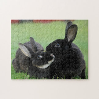 Two Nuzzling Rex Rabbits - Animal Photography Puzzle