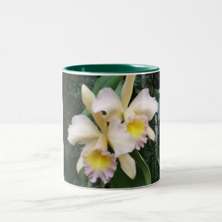 Two Orchids Two-Tone Coffee Mug