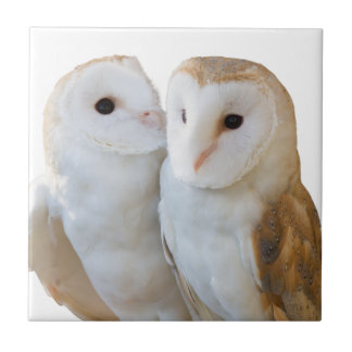 two owls friends tile