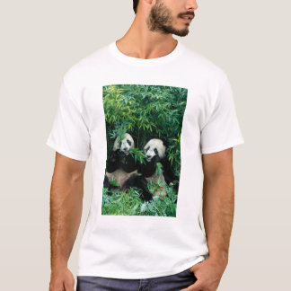 Two pandas eating bamboo together, Wolong, 2 T-Shirt