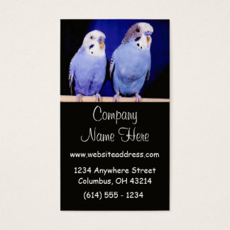 Two Parakeets Business Cards