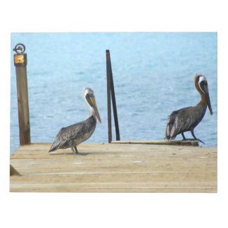 Two pelicans on the pier, Curacao Caribbean, Photo Notepads