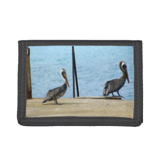 Two pelicans on the pier, Curacao Caribbean, Photo Tri-fold Wallets