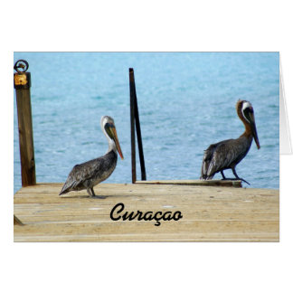 Two pelicans on the pier, Curacao, Photo Greeting Card