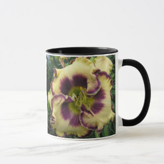 Two Picture Mug